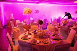 Toni + Craig | Wedding Reception