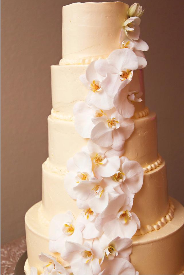 Toni + Craig | Stunning Cake