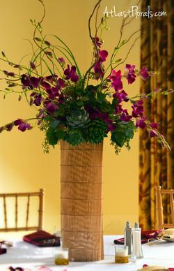 Heath+Orchidb.jpg