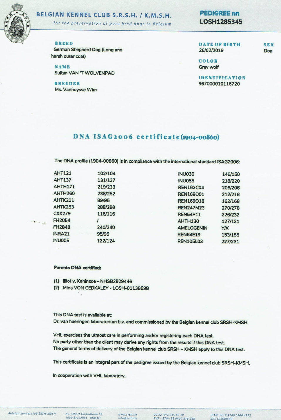 FCI-Sultan%20Pedigree-2_edited.jpg