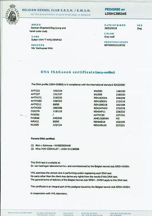 FCI-Sultan Pedigree-2.jpg
