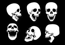 human-skulls.jpg