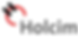 logo_holcim_head.png