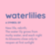 this is waterlilies digital marketing - definition