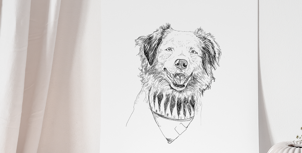 Sketch Pet Portrait