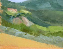Toscana fields 2016