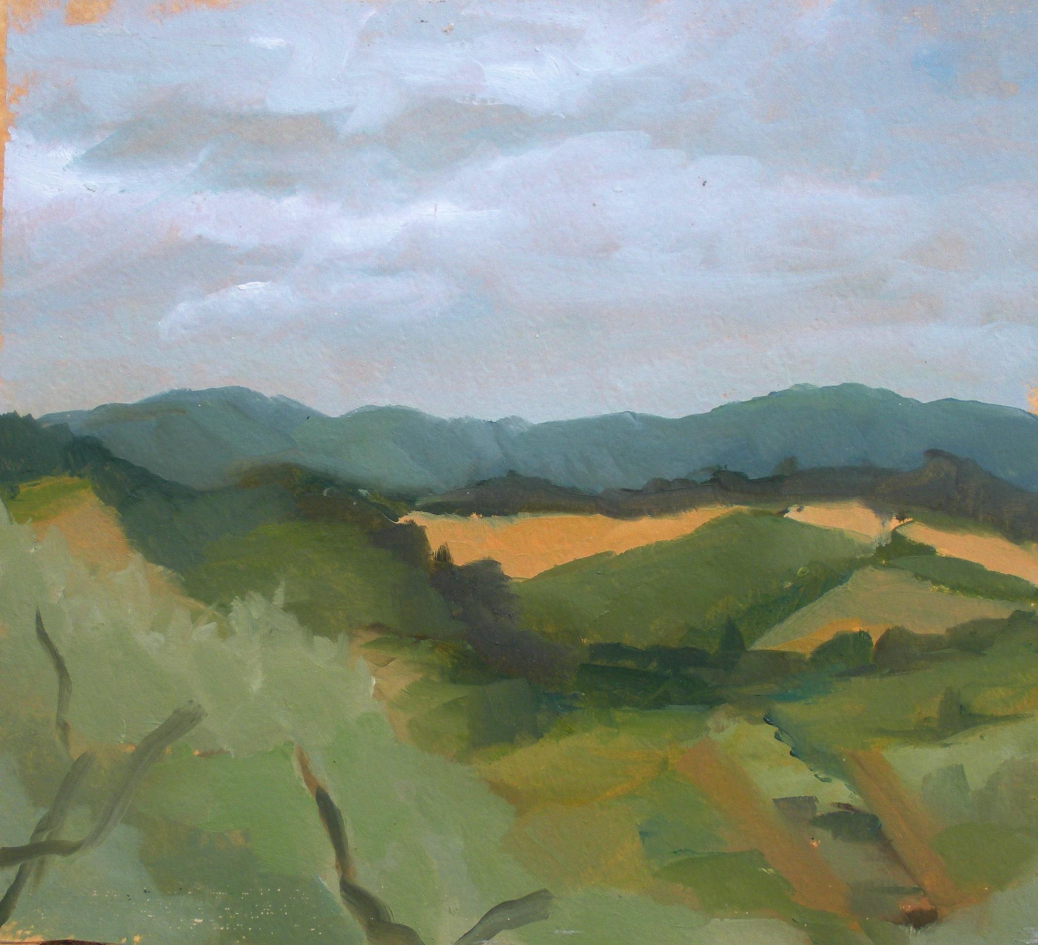 fields, Italy 2016