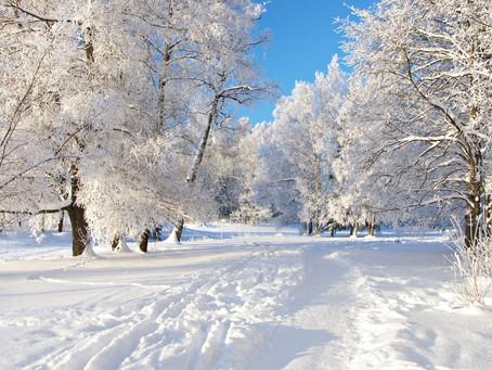POEM: Snowflakes