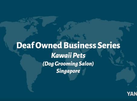Kawaii Pets: Deaf Owned Business
