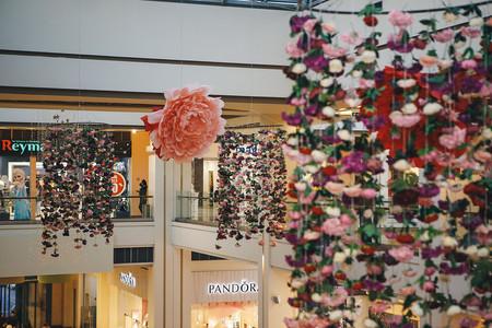 Beautiful flowers at Dalma Garden Mall