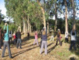 Pessoas fazendo exercicio na floresta