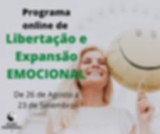 Programa de.png