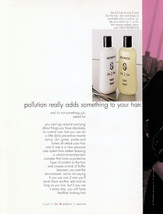 hair care print ad campaign