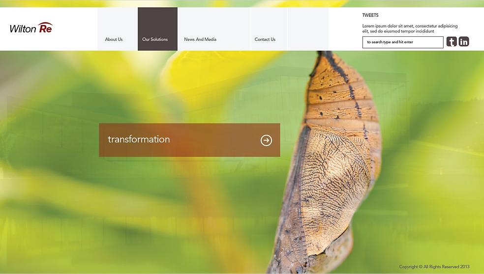 Financial service website design, logo design, letterhead design, brochure design