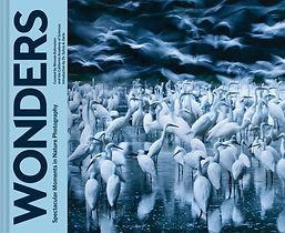 Wonders_CVR.jpg