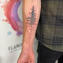 tattoomija praha pink.ink tetovani barvy_7.JPG