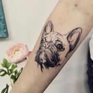 Buldocek pes tetovani studio Tattoo Mija