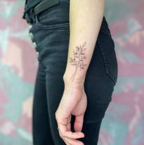 tattoomija praha pink.ink tetovani linky linie_1.JPG