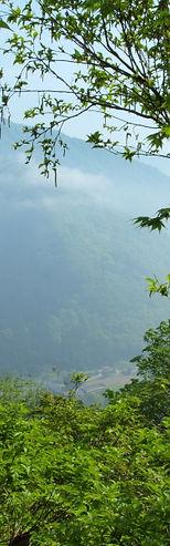 緑の東北山形