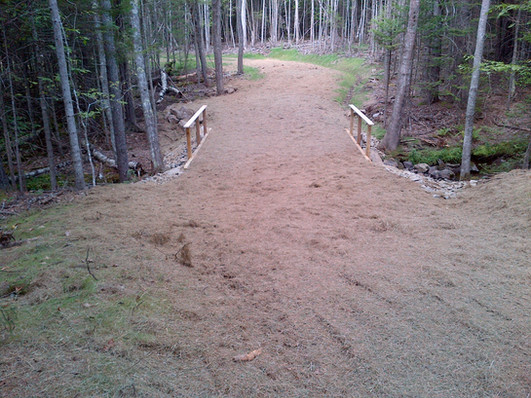 Hose Trail Bridge