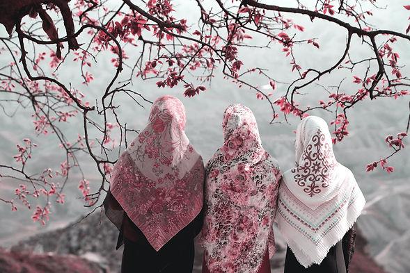 Muslim women.jpeg