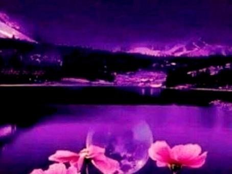 Pleine Lune Rose : pleine lune du printemps