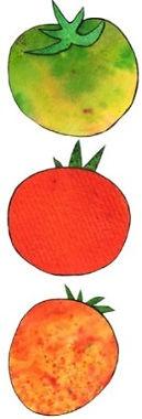 Tomatoes%25252520border%25252520final__e