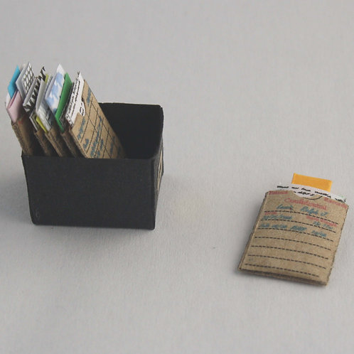 12th Scale  Patient Files in Box