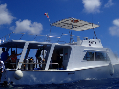 Dive Cozumel with Plongee Grand Cozumel off of the Anita Dive Boat... Accommodating, flexible, affor