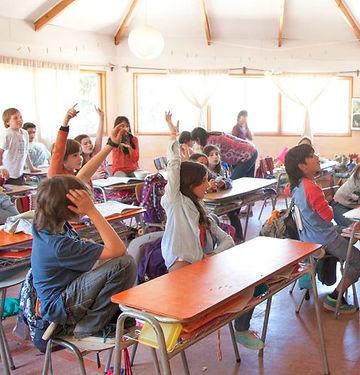 Colegio Micael - Pedagogia Waldorf