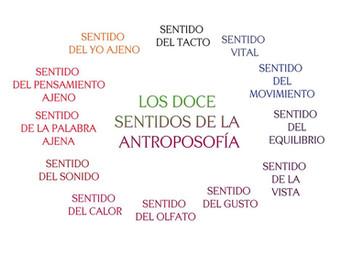 Los doce sentidos de la Antroposofía