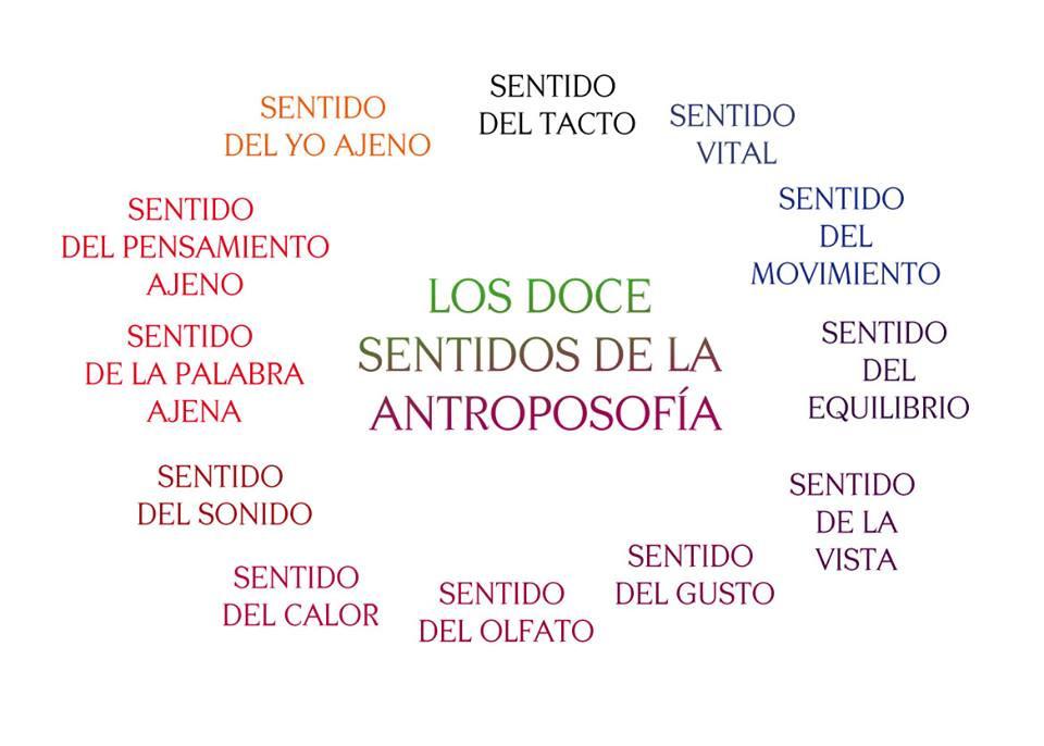 Los_doce_sentidos_de_la_Antroposofía.jpg