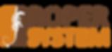 Roper System Logo