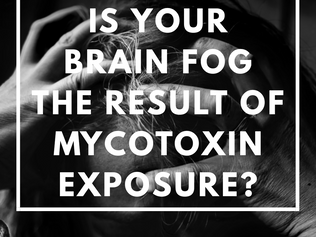 Is Your Brain Fog the Result of Mycotoxin Exposure?