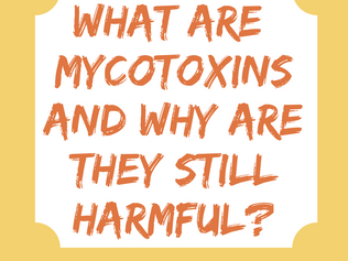 What Are Mycotoxins and Why Are They Still Harmful