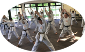 PART II  A Modern View of Kata, a Venerable Training Tool