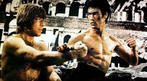Perfect 10  Top 10 Ten Martial Arts Movie Fight Scenes
