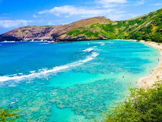 HAWAII NEEDS TEACHERS FROM THE MAINLAND!