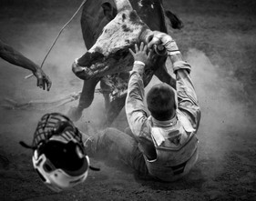 A young bull rider is thrown from his bull at a bull riding competition at the Johnson County Fairgrounds outside of Warrensburg, Missouri in the summer of 2012