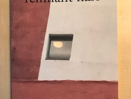 REMNANT HALO OUT NOW!