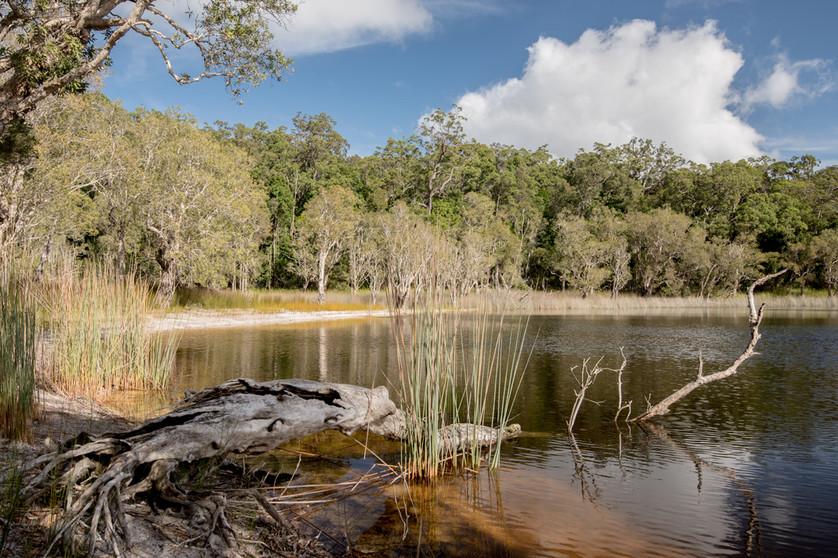 Poona Lake. Australia.