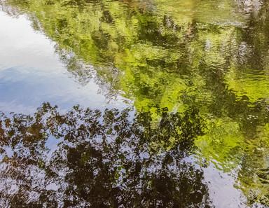 River Allen Reflected. UK.