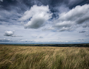 Allendale Moors.jpg