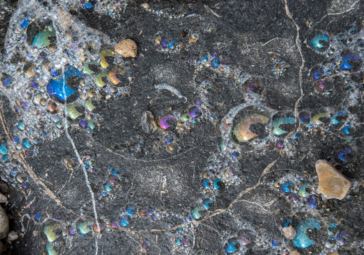 Now and Then: Rainbow Sea-Foam on Ammonite Fossil