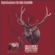 6 Dest Elk sa4699.jpg