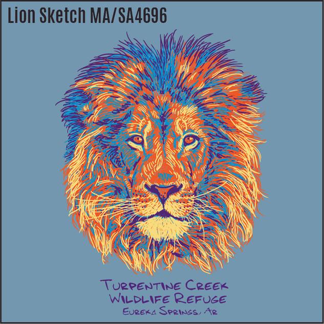 Lion Sketch SC4696.jpg