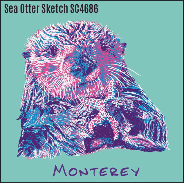 5 Sea Otter Sketch SC4686.jpg