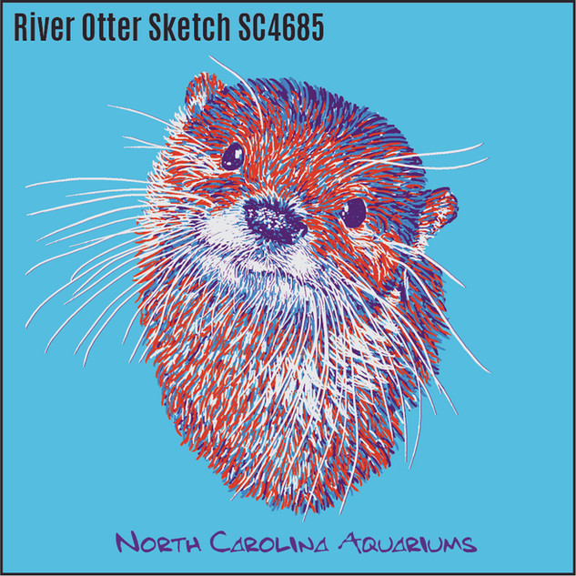 4 River Otter Sketch SC-SA4685.jpg