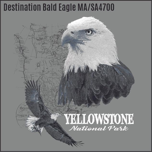 Dest Bald Eagle SA4700.jpg