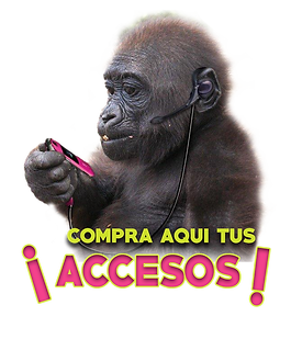 ACCESOS.png